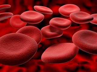 Blood Cells cruising down a vein