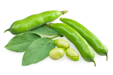 fresh beans with leaves isolated on white