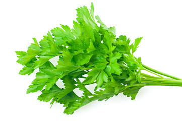 Bunch of fresh green parsley isolated on white.
