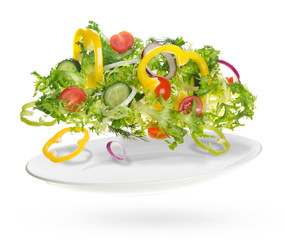 light salad of fresh vegetables
