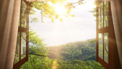 animated background with open window,leaves and landscape
