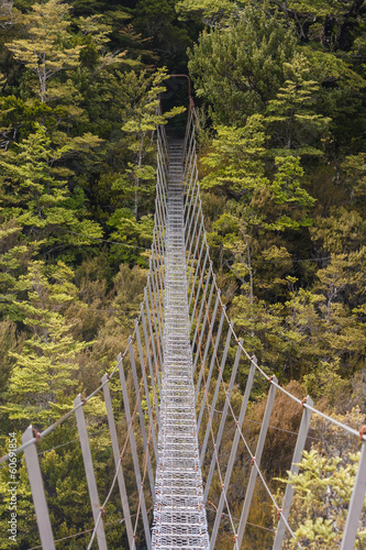 suspension bridge above beech trees gorge
