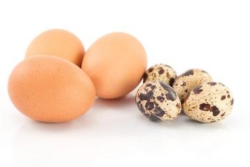 uova di gallina e uova di quaglia