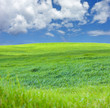 verte colline