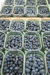 Fresh blueberries in boxes on the counter