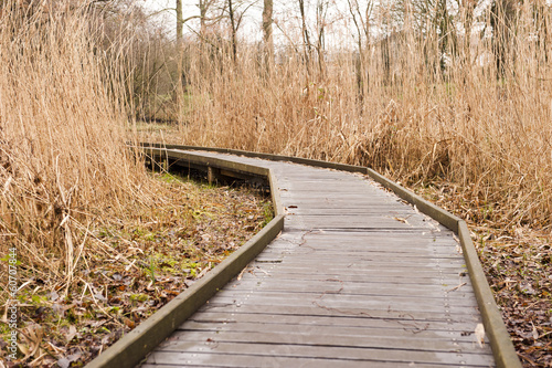 Wooden pathway through grass landscape