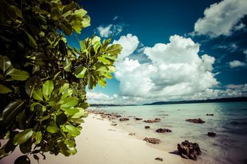 Havelock Island blue sky,Andaman Islands,India