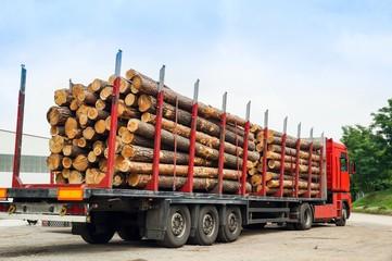 Langholztransporter, LKW