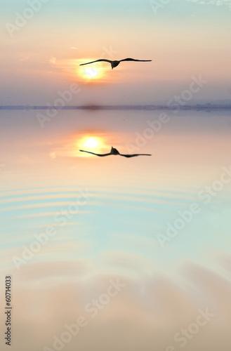 Fotobehang Een Hoekje om te Dromen amanecer de colores suaves