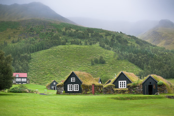 Overgrown Typical Rural Icelandic Houses
