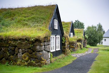 Overgrown Typical Rural Icelandic house at overcast day