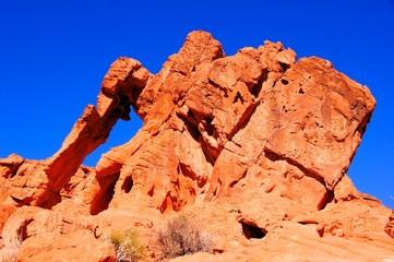 Elephant Rock, Valley of Fire State Park, Nevada, USA