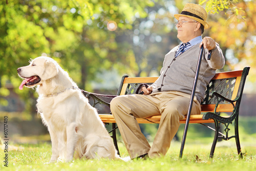 Senior gentleman seated on bench with his dog relaxing in park