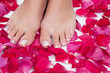 Beautiful woman's legs with red rose petals