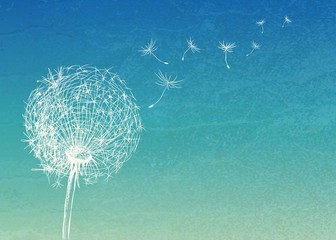 Abstract vintage background with flower dandelion © annbozhko