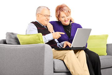 Smiling mature couple sitting on a sofa and looking at laptop