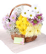 Beautiful chrysanthemum flowers in wicker basket isolated
