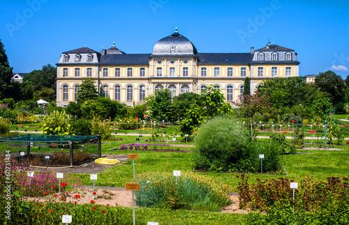 Poppelsdorf Palace - 60731484