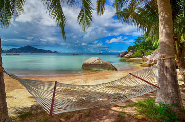 Hammock at lovely beach at seaside between palm trees