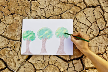 Hand drawing a picture of trees on cracked earth