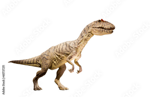 Poster Restoration of an Allosaurus dinosaur isolated.