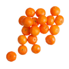 Mandarins on white