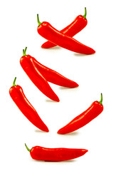 Isolated image of a hot pepper closeup
