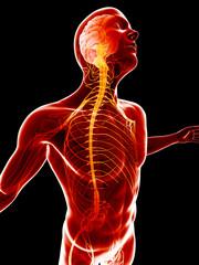 conceptual illustration - inflamed nervous system