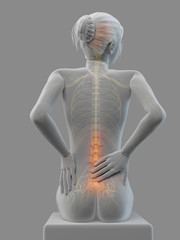 3d rendered medical illustration - Acute pain in a woman´s back.