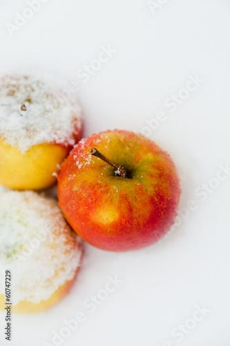 canvas print picture Apfel im Schnee