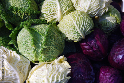 Red cabbage and kale