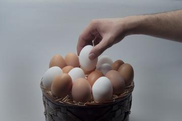 taze yumurta
