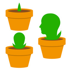 Green mans head growing in a flowerpot