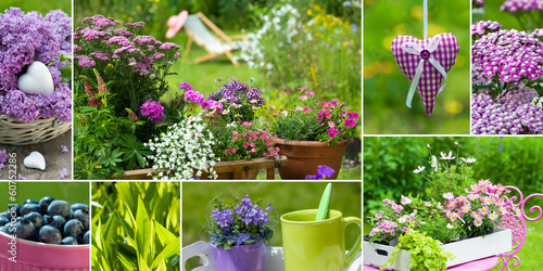 Sommergarten Collage