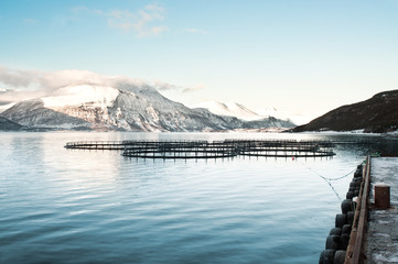 Fish farms in northern Norway