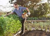 Farmer on local sustainable organic farm