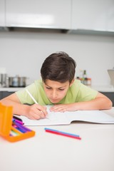 Concentrated boy doing homework in kitchen