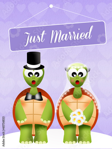 Wedding of turtles