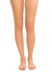 Beautiful female legs on white background
