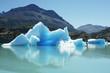 Nationalpark Los Glaciares, Patagonien, Argentinien - 60760243