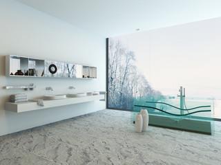 Bathroom interior with double basin and glass bathtub