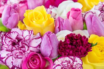 Blumen - Tulpen und Rosen