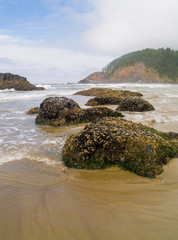 High Tide Coming in on the Oregon Coast at Ecola Beach