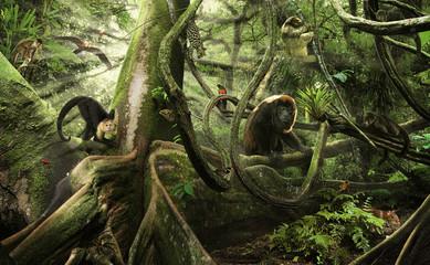 Das Leben im Regenwald