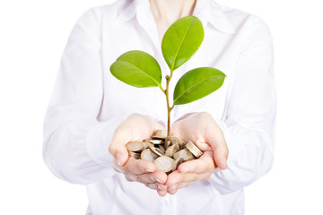 Growing plant with coin money on businesswoman hands, isolated o