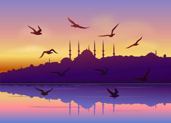 Martılar ve İstanbul