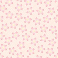 CherryBlossom_background05