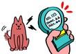 マイクロチップでペット識別