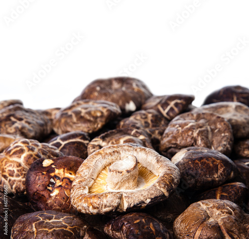 Dried Shiitake Mushroom Background with Copy Space