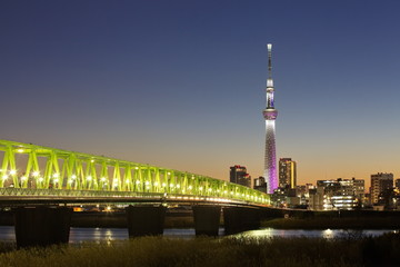Tokyo city view and tokyo skytree , sihouette skyline
